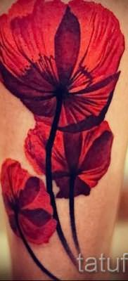 Picture Poppy Tattoo – photos for an article about the importance of tattoos 1